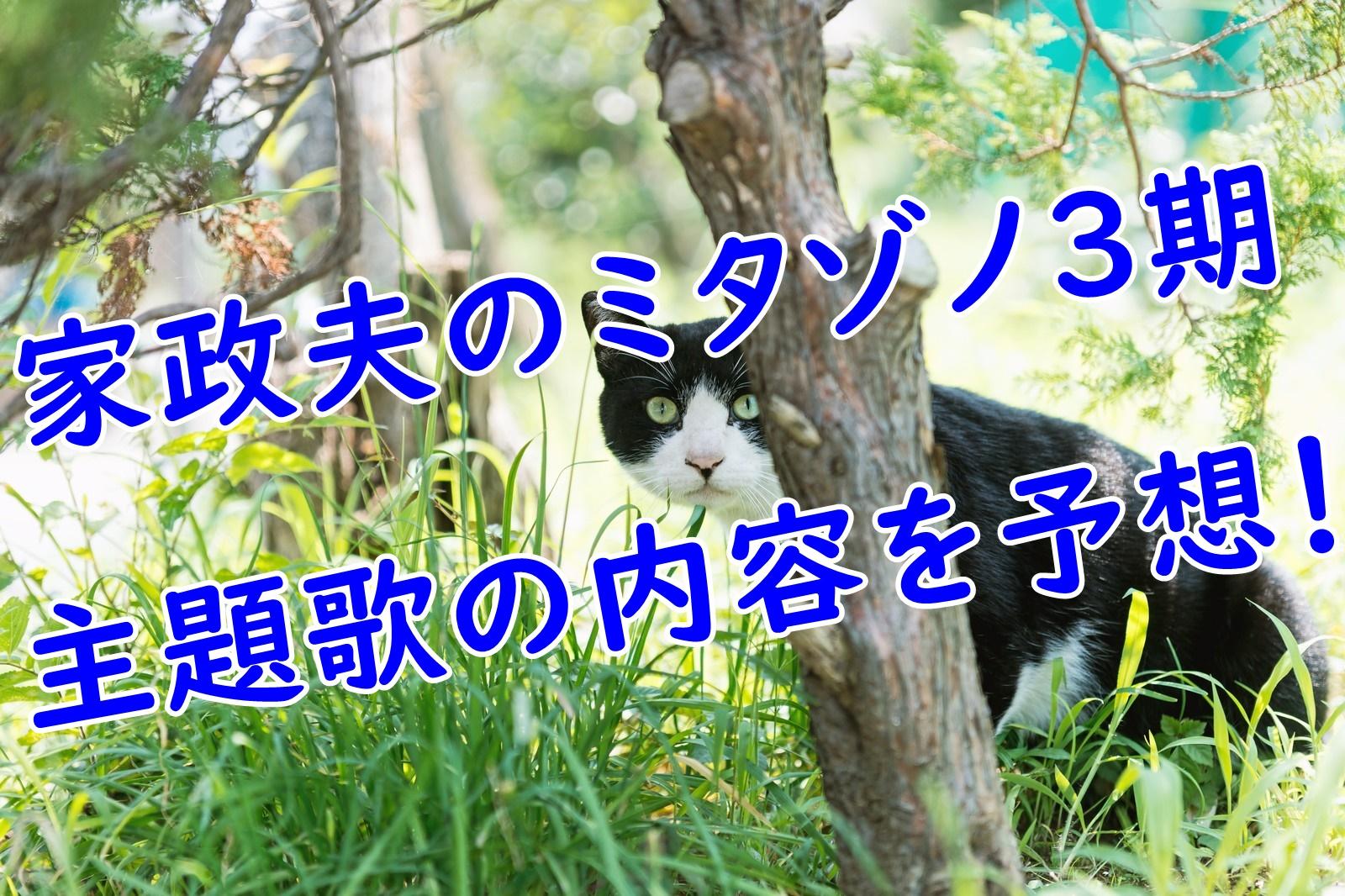 家政夫のミタゾノの3期主題歌の内容を大胆予想!!!